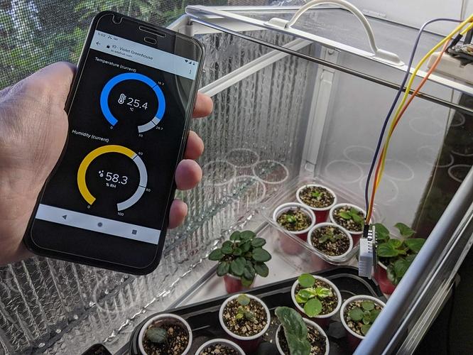 greenhouse2-1536x1152